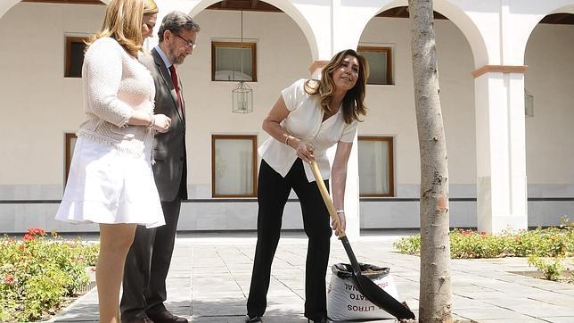 Susana Díaz echa tierra con una pala en un árbol del Parlamento andaluz