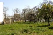 Vista de la Huerta del Rey Moro desde la zona de la calle Enladrillada, con las acacias y la higuera que aún conserva. MILLÁN HERCE