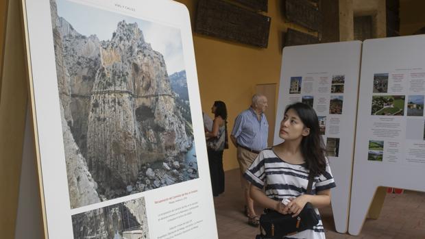 Una visitante contempla la muestra de Hispania Nostra en la Mezquita-Catedral