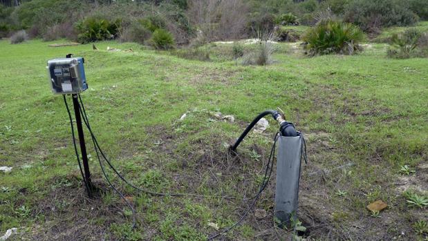 Pozo ilegal en la zona de la Rocina en el parque de Doñana