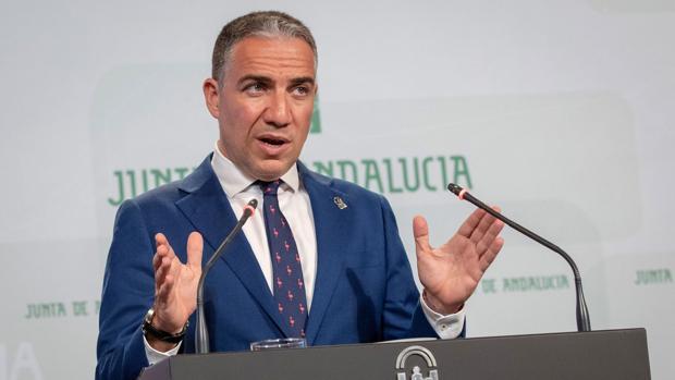 Elías Bendodo, portavoz del Gobierno andaluz