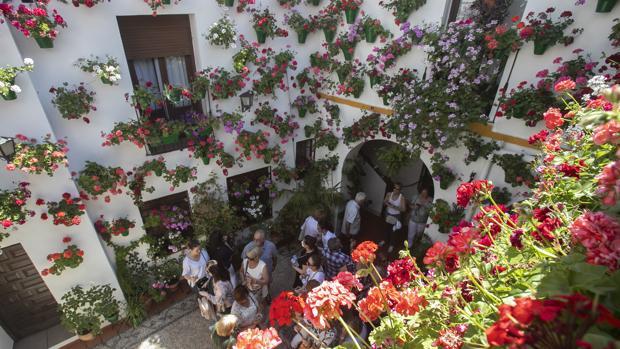 Patio de San Basilio, 22, el más visitado