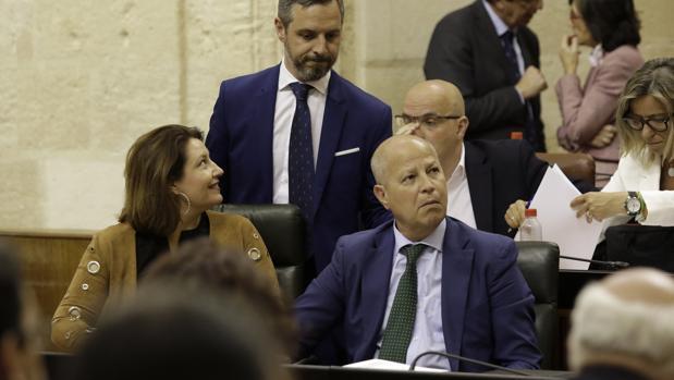 El consejero de Educación Javier Imbroda en un pleno del Parlamento