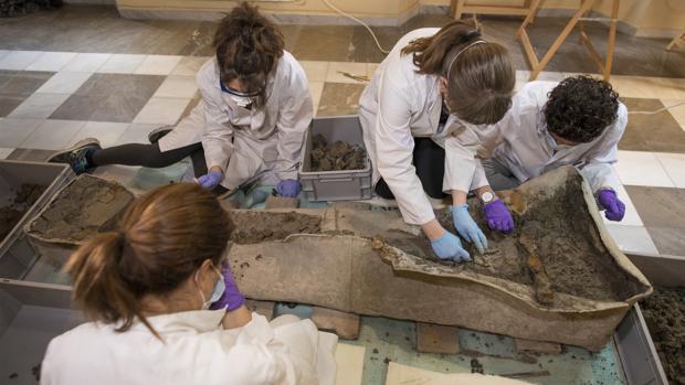 Los trabajos están teniendo lugar en el Museo Arquelógico de Granada.