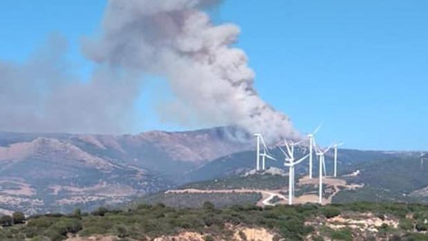 Imagen difundida por el Plan Infoca del incendio de Tarifa
