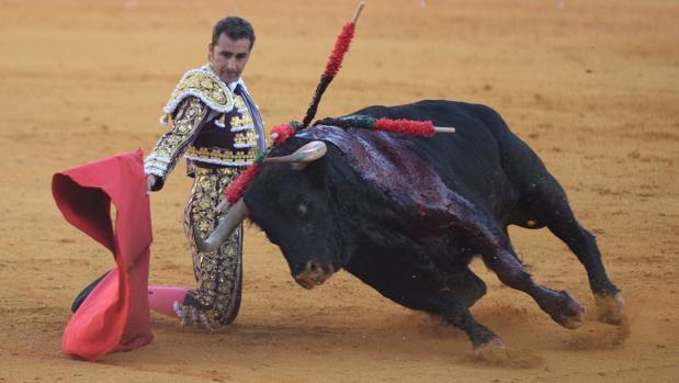 El Fandi da un pase de rodillas esta tarde en la Maestranza de Sevilla