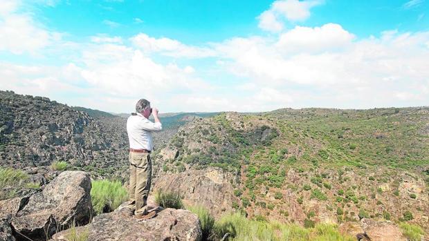 El proyecto Oeste Ibérico es un trabajo transfronterizo que cubre 2,5 millones de hectáreas en las provincias de Salamanca, Cáceres y Zamora y en el centro de Portugal