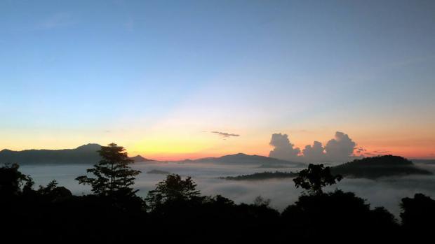 Las áreas protegidas afrontan futuro incierto en EE.UU. y en la Amazonía