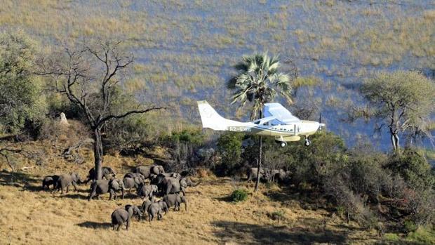 Conoce a las pioneras mujeres masai que protegen la vida silvestre de Amboseli