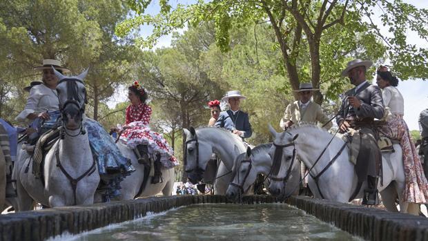 Un alto en el camino para apagar la sed de los caballos este miércoles 5 de junio