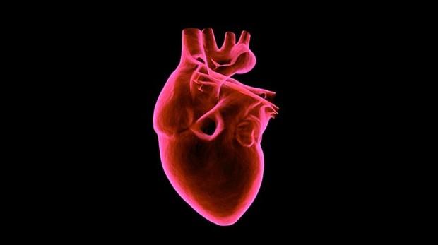 Existe la necesidad urgente de cuidar los corazones de estos pacientes.