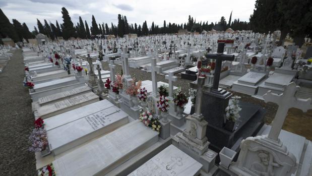 Vista del cementerio de San Fernando, en Sevilla
