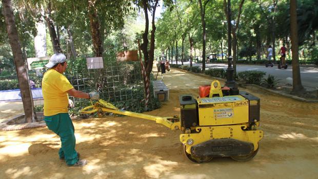 Un operario se afana en aplastar con una máquina el albero de una de las calles del Parque de María Luisa