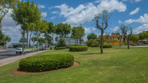 Zona verde en un entorno residencial