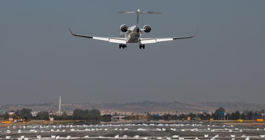 Un avión sobrevuela la zona acotada de la pista
